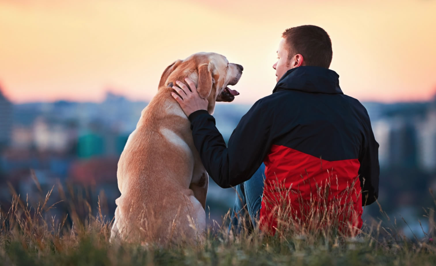 Man petting dog at sunset overlooking a town in distance