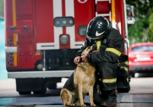 firefighter with his dog